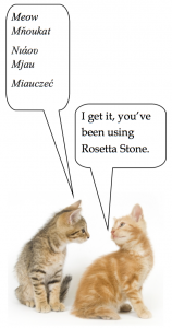 Say It In 30 Languages With Rosetta Stone! | Bernardsville